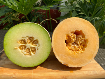 Two Kinds Melons Php 1050