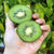 Zespri Green Kiwi Buy 5 and Get 1 Free