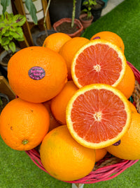 Imported Cara cara oranges same day delivery