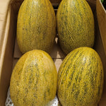 Buy 2 Yellow Hami Melons for 1200