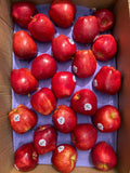 US Red Delicious Apples
