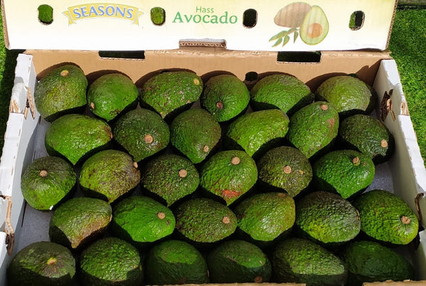 Dole Hass Avocados By The Box