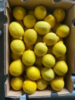 South Africa Lemons By The Box