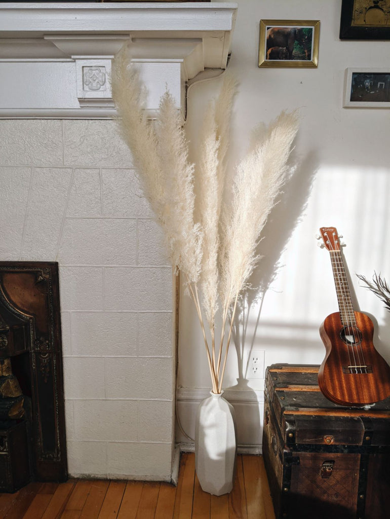 Large White Pampas in Geo Vase