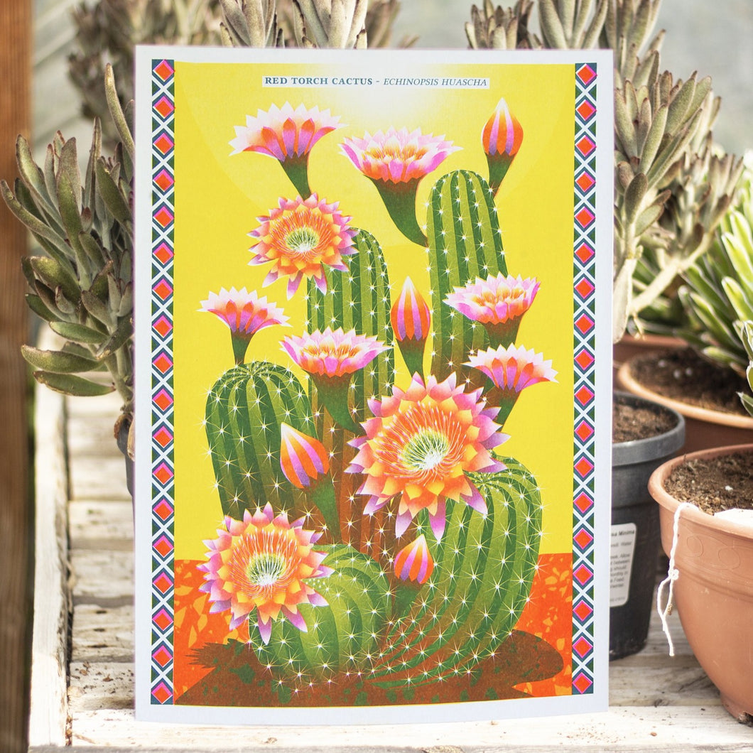Cactus A3 Risograph Print by Printer Johnson