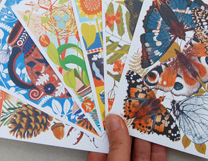 British Wildlife A6 Postcard Pack by Printer Johnson