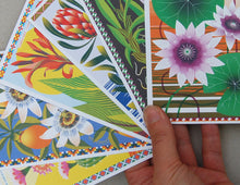 Load image into Gallery viewer, Flowers Of The World A6 Postcard Pack by Printer Johnson