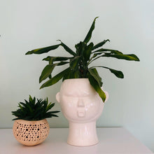 Load image into Gallery viewer, Mask Plant Pot - ad&i