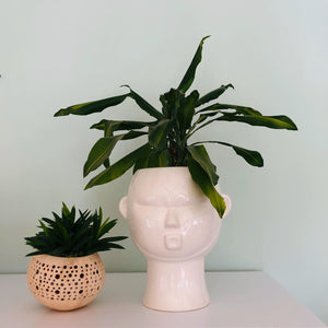 Mask Plant Pot - ad&i