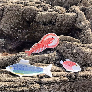 Anouk Small Red Fish Plate