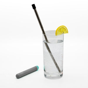 Skittle Reusable Stainless Steel Straw