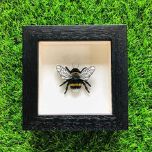 Load image into Gallery viewer, Embroidered and Painted Bumble Bee Framed Wall Art