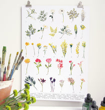 Load image into Gallery viewer, British Wild Flower A3 Digital Print by Abby Cook