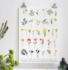 British Wild Flower A3 Digital Print by Abby Cook - ad&i