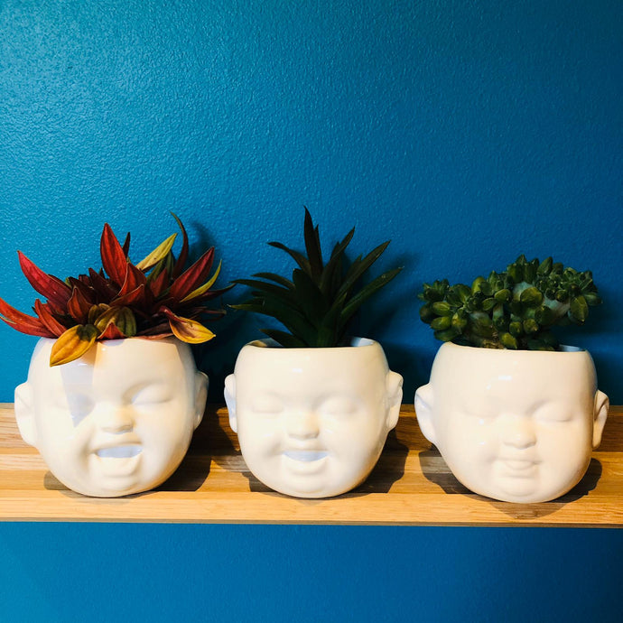 Baby Face Ceramic Plant Pots Set of Three - ad&i