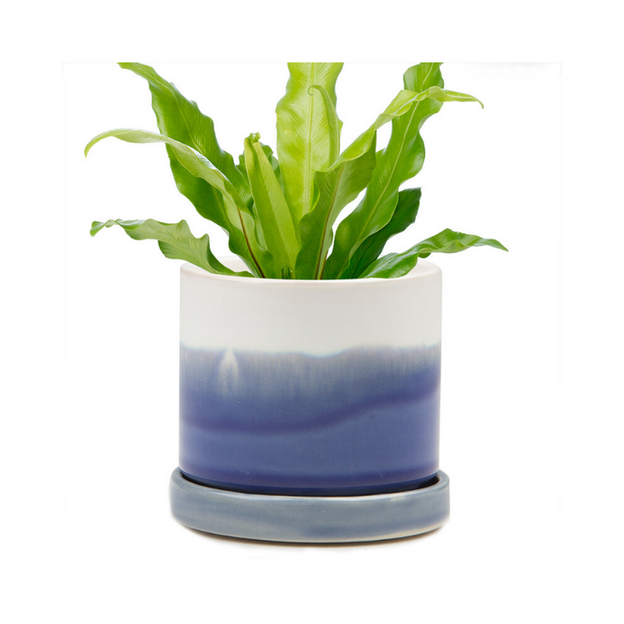 Blue Layers Dip Dyed Succulent Plant Pot and Saucer