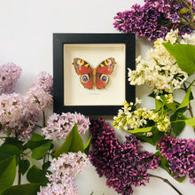 Load image into Gallery viewer, Embroidered and Painted Peacock Butterfly Framed Wall Art - ad&i