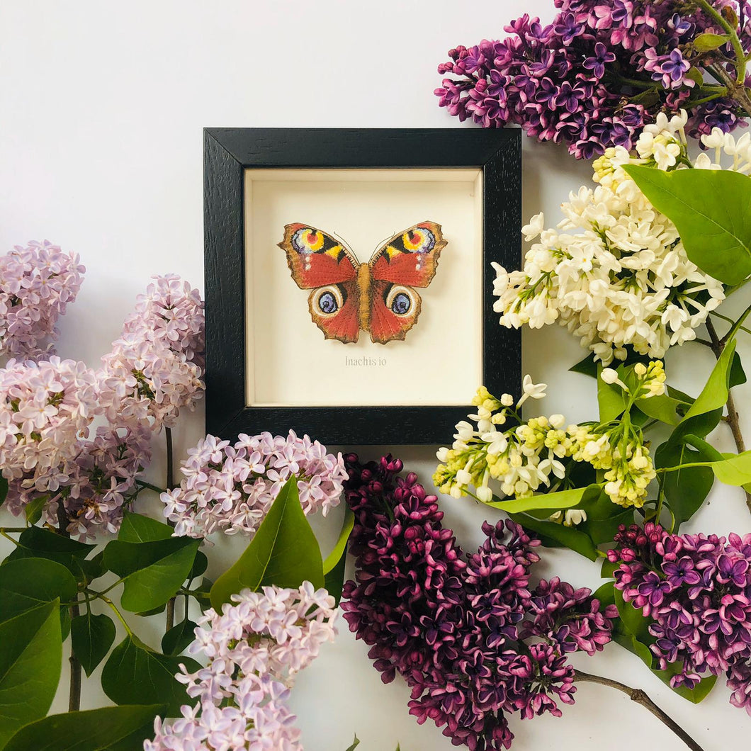 Embroidered and Painted Peacock Butterfly Framed Wall Art - ad&i