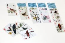 Load image into Gallery viewer, 3D Bird Playing Cards - ad&i