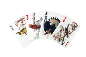 3D Bird Playing Cards - ad&i