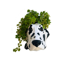 Load image into Gallery viewer, Ceramic Dalmatian Head Wall Sconce Vase - ad&i
