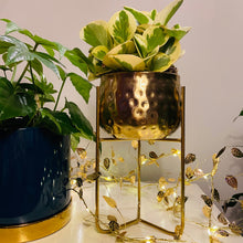 Load image into Gallery viewer, Hammered Gold Metal Planter