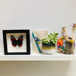Embroidered and Painted Red Admiral Butterfly Framed Wall Art - ad&i