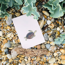Load image into Gallery viewer, Come Together Turtle A6 Postcard - ad&i