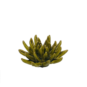 Olive Cactus Coral Flower Decor - ad&i