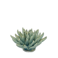 Load image into Gallery viewer, Light Blue Cactus Coral Flower Decor - ad&i