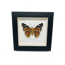 Load image into Gallery viewer, Embroidered Painted Lady Butterfly Framed Wall Art - ad&i