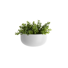 Load image into Gallery viewer, Oval Wall Matt Ceramic Plant Pot - ad&i