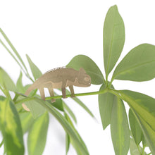 Load image into Gallery viewer, Plant Animal Chameleon - ad&i