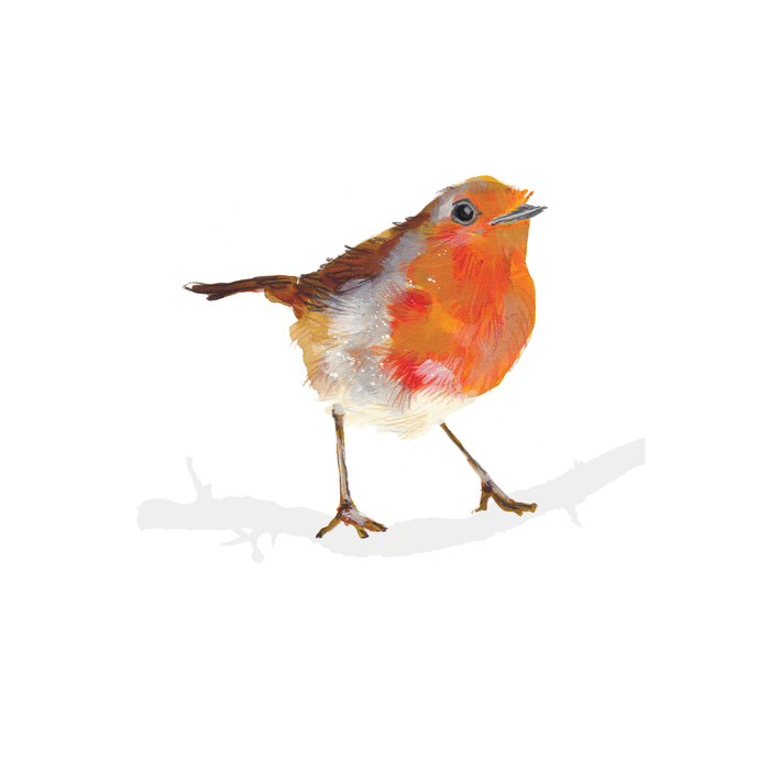 Robin A4 Digital Print by Abby Cook