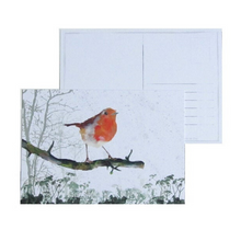 Load image into Gallery viewer, Robin Postcard - ad&i