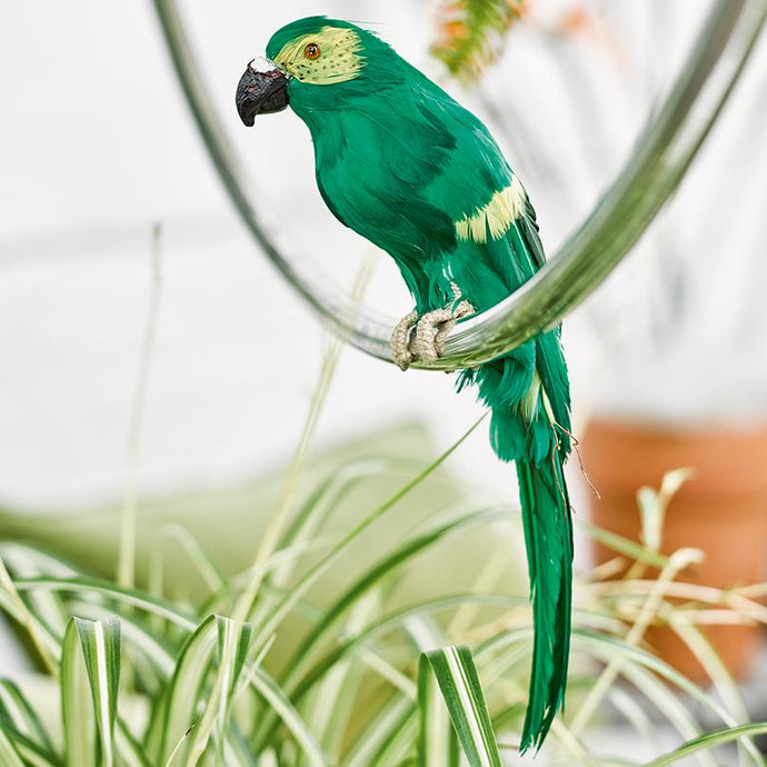 Tropical Fiesta Parrot Shaped Decoration