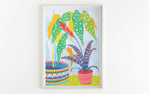 Bromeliad Botanical Plants A3 Risograph Print by Printer Johnson - ad&i
