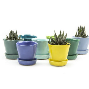 Biscay Blue Tika Succulent Plant Pot and Saucer