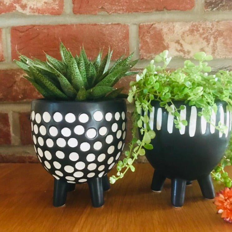 Black and White Spotty Planter on Legs - ad&i