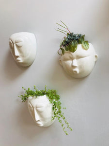 Round Mask Wall Planter