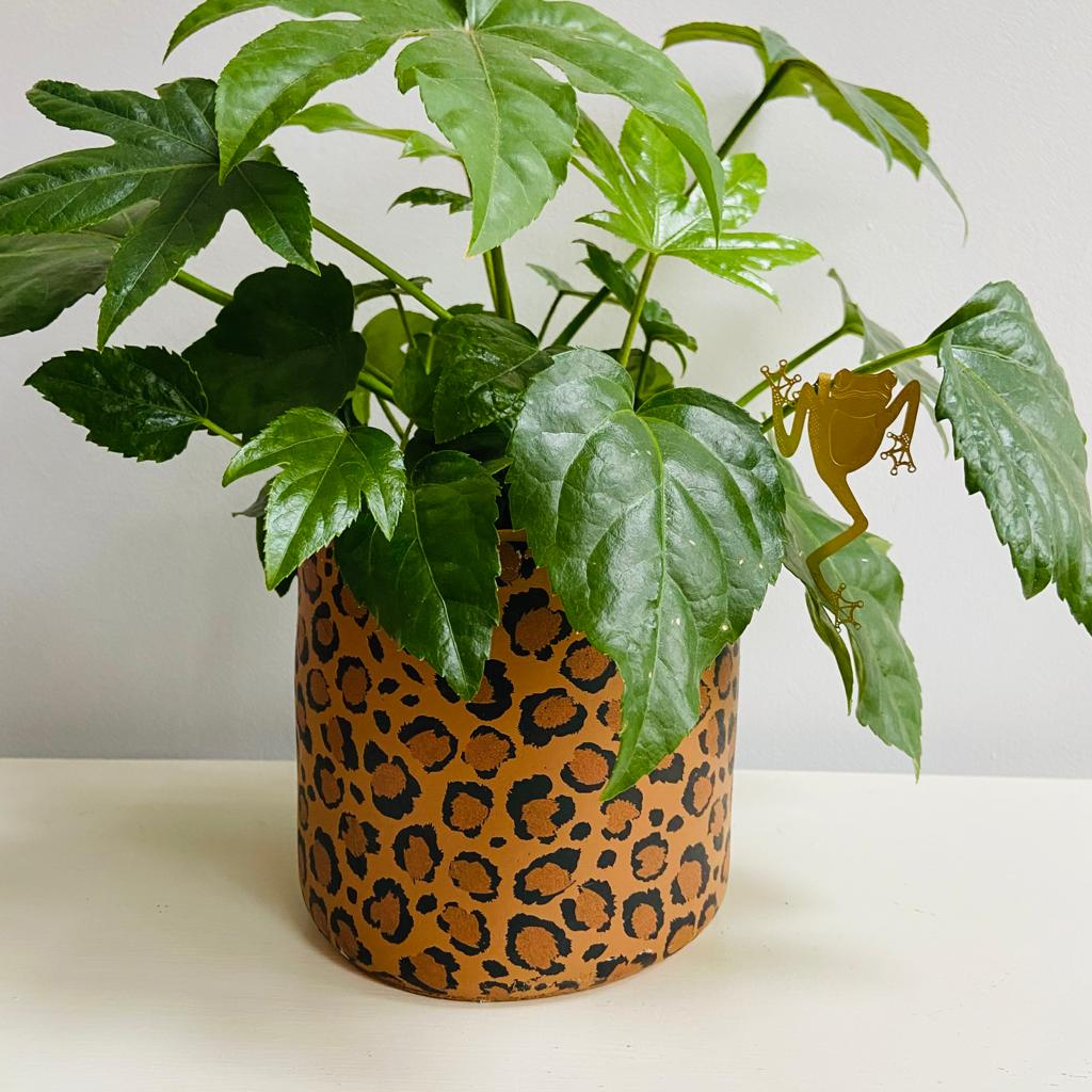 Leopard Cement Planter
