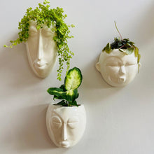 Load image into Gallery viewer, Round Mask Wall Planter