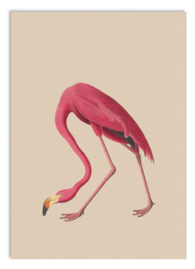 Sheila the Flamingo A5 Digital Print - ad&i