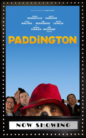Picture of Paddington Commentary