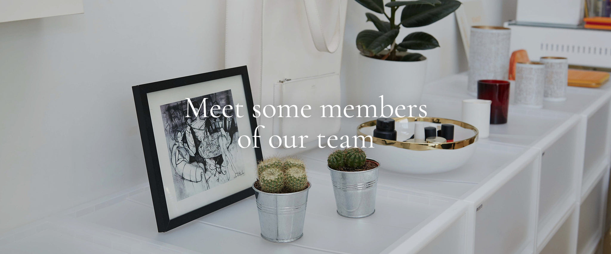 Meet some members of our team