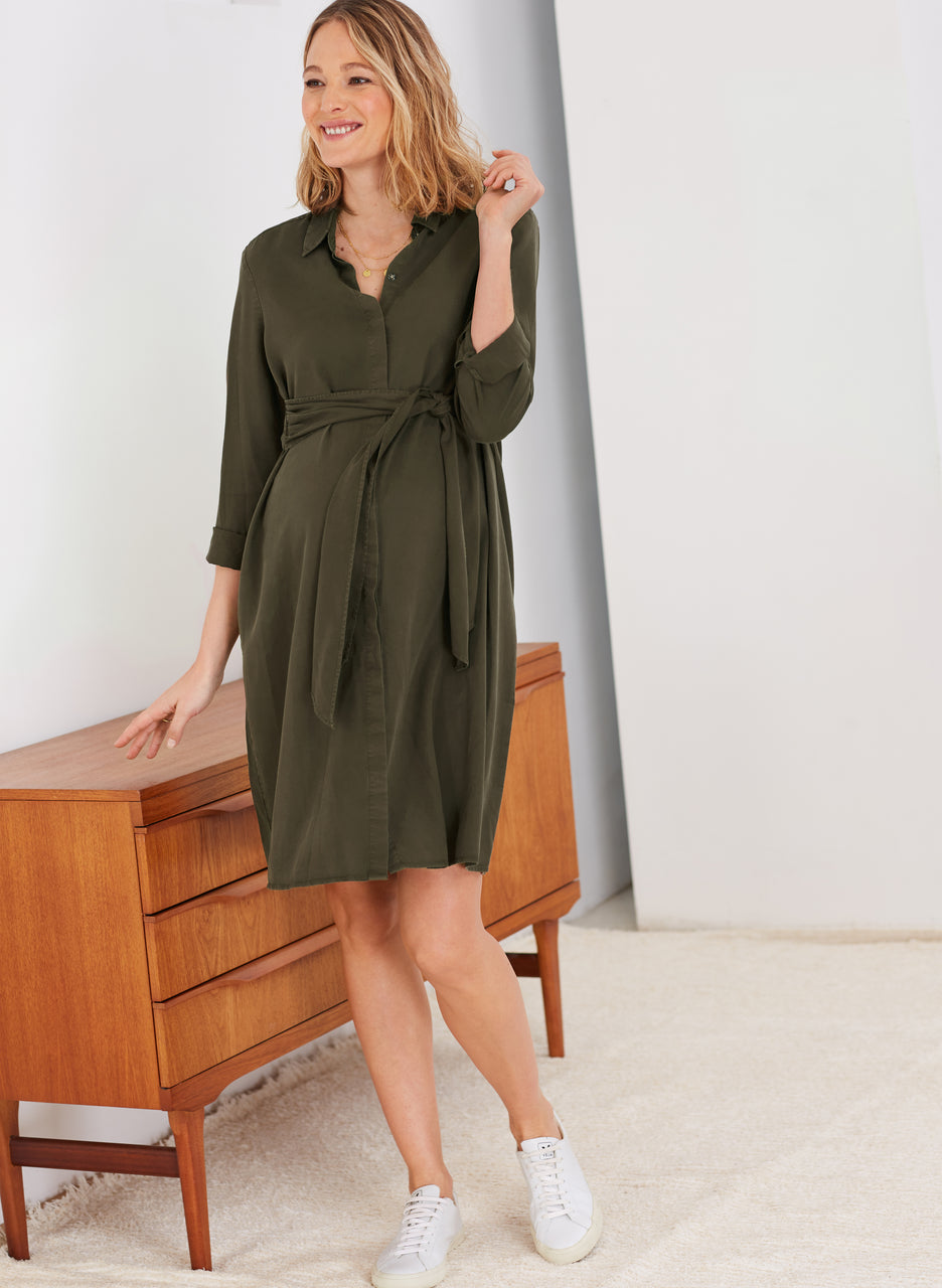 Aiden Maternity Dress