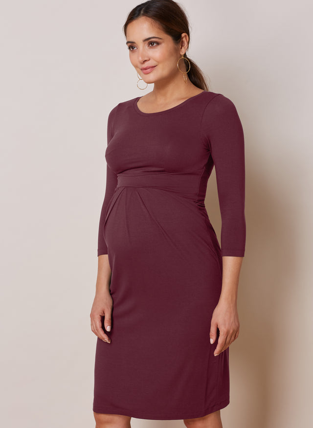Ivybridge Maternity Dress