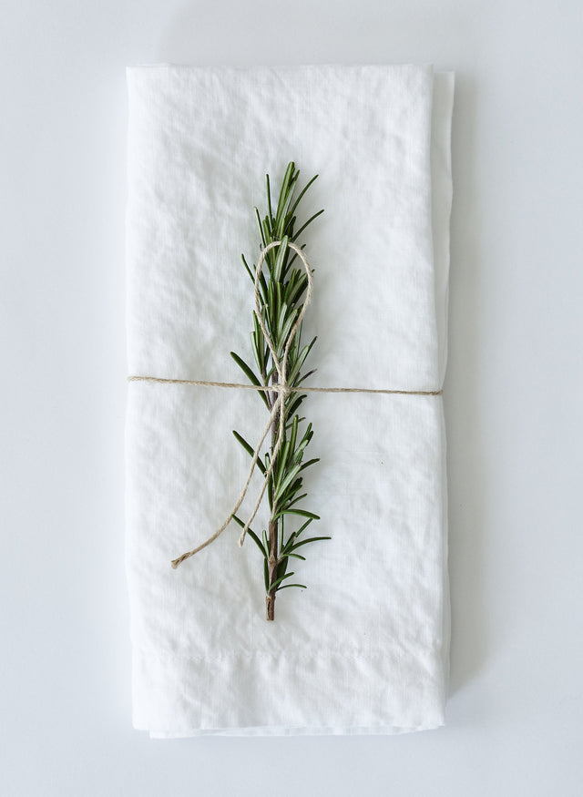 Ecosophy Organic Linen Napkin - Set of Four