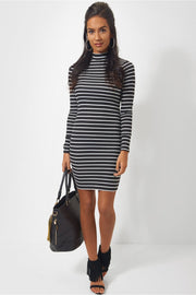 Reva Turtle Neck Stripe Mini Dress