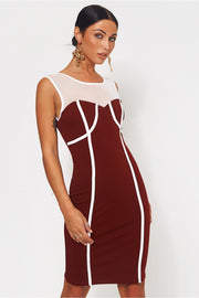Molly Burgundy Mesh Bodycon Dress